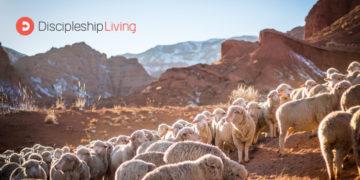 Discipleship Living: Psalms